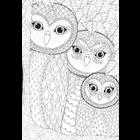 Anatolian . ANA Owls Family - 260pc colouring Jigsaw Puzzle