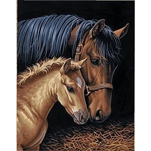 Dimensions . DMS Gentle Touch Mare w/Foal - Paint By Number