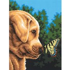 Dimensions . DMS Newfound Friends (Dog & Butterfly) Paint By Number