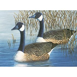 Royal (art supplies) . ROY Geese Paint By Number