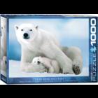 Eurographics Puzzles . EGP Polar Bear & Baby – 1000pc Puzzle