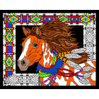 Stuff To Color . SFC 16 x 20 Velvet Desert Stallion Nature Animals Calgary