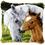 "Vervaco . VVC Horse & Foal Cushion Latch Hook Kit 16""X16"""