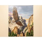 Dimensions . DMS Soaring Eagle/Mt. Rushmore Paint By Number