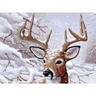 Royal (art supplies) . ROY Dancing Snow - Paint by Number Calgary Nature Animals