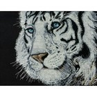 Design Works . DWK White Tiger (14 Count) Counted Cross Stitch Kit