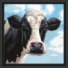 """Dimensions . DMS """"Cow"""" - Paint By Number"""
