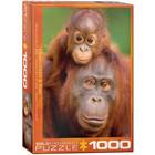 Eurographics Puzzles . EGP Orangutan & Baby - 1000pc Puzzle