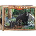 Eurographics Puzzles . EGP New Discoveries by Daniel - 1000pc Puzzle