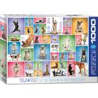 Eurographics Puzzles . EGP Yoga Dogs - 1000pc Puzzle