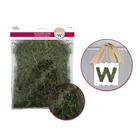 MultiCraft . MCI Dried Naturals: 50g Reindeer Moss Green