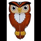 Skydogs Kites . SKK Owl Kite