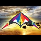 """Skydogs Kites . SKK Freebird Rainbow Kite 74"""" x 33"""""""