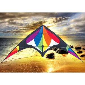 "Skydogs Kites . SKK Freebird Rainbow Kite 74"" x 33"""