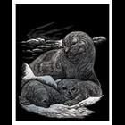 Royal (art supplies) . ROY Engraving Art Silver - Seal and Pup Nature Animals Calgary