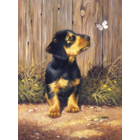 Royal (art supplies) . ROY Royal & Langnickel Daschund Puppy Paint by Number Butterfly Nature Animals Calgary