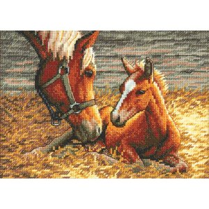 """Dimensions . DMS Counted Cross Stitch Kit 7""""X5"""" Good Morning"""