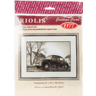 "RIOLIS . RIO Counted Cross Stitch Kit 15""X10.25"" The Beetle (14 Count)"