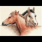 Dimensions . DMS Horse Pals Cross Stitch Kit Animals Nature Art Calgary