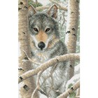 "Dimensions . DMS Stamped Cross Stitch Kit 9""X14"" Wintry Wolf Animals Nature Winter Calgary"