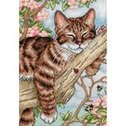 "Dimensions . DMS Gold Petite Counted Cross Stitch Kit 5""X7"" Napping Kitten (18 Count)"