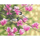 "Dimensions . DMS Paint By Number Kit 14""X11"" Chickadees & Magnolias"