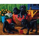 Craft Buddy . CBD Black Labrador Pups - Crystal Art Kit (Large)