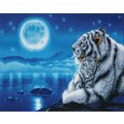 Crystal Art Kit . CAK Lullaby White Tigers - Crystal Art Kit (Large)