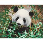 Crystal Art Kit . CAK Hungry Panda - Crystal Art Kit (Large)