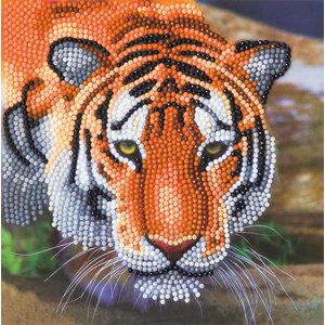 Crystal Art Kit . CAK Tiger - Crystal Art Card
