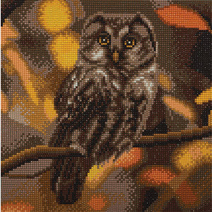 Craft Buddy . CBD Tawny Owl - Crystal Art Kit (Medium)