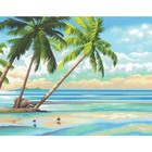 Dimensions . DMS Tropical  View- Paint By Number
