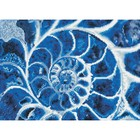 Diamond Dot . DDT Blue Nautilus - Diamond Art Kit