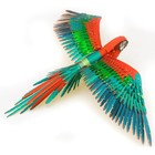 Fascinations . FTN Metal Earth - Iconx Parrot