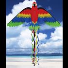 """Skydogs Kites . SKK Rainbow Parrot Kite, 66"""""""