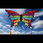 Skydogs Kites . SKK Rainbow Butterfly Kite