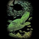 Royal (art supplies) . ROY Undersea Turtle - Mini Engrave Art