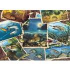 Cobble Hill . CBH Fish Pics - 1000pc Puzzle
