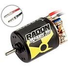 Associated Electrics . ASC Reedy Radon 2 15t 3-slot 4100kV Brushed motor