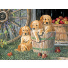 Cobble Hill . CBH Puppy Pail pile-up 350pc Puzzle Animals Calgary