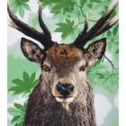 Vervaco . VVC Proud Red Deer - Diamond Art Calgary Animals
