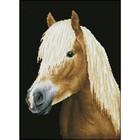 Diamond Dot . DDT Chester - Diamond Art Animals Horse Calgary