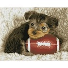 Diamond Dot . DDT Footy Pup - Diamond Art Animals Puppy Pet Football Calgary