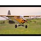 Hangar 9 . HAN Hanger9 Carbon Cub 15cc ARF