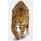 Diamond Dot . DDT On The Prowl - Diamond Art Cheetah Animals Nature Calgary