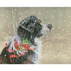 Diamond Dot . DDT Christmas Collie - Diamond Art Nature Winter Snow Dog Calgary