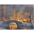 Cobble Hill . CBH Winter In The Park 1000pc Puzzle