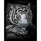 Royal (art supplies) . ROY White Tiger - Silver Foil Art Animals Nature Calgary
