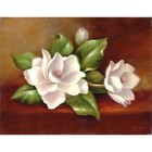 Royal (art supplies) . ROY Magnolias - Acrylic Paint By Number Flower Nature Art Calgary