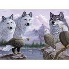 Royal (art supplies) . ROY Wolves & Eagles Paint By Number Nature Animals Calgary